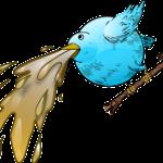 Erste Hilfe bei Vögeln