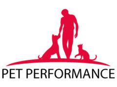 Gesunde Hundenahrung – Über das Futter zum Erfolg